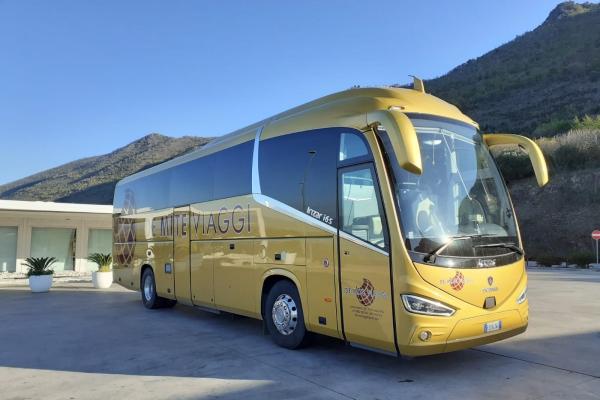 de-mite-autobus-new-1F213A170-AB9B-1A83-313F-96B470B2834C.jpeg