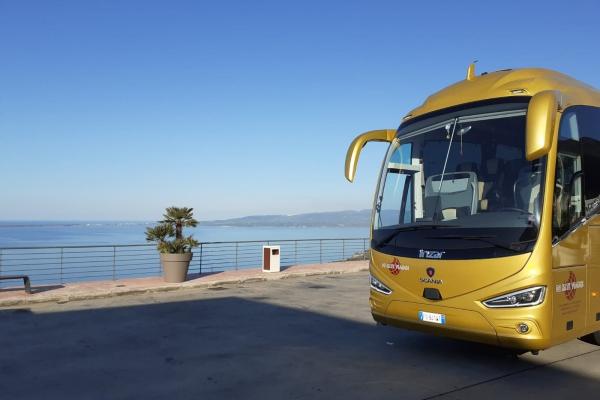 de-mite-autobus-new-24009CA09-4D84-8848-3147-D0603B306B4B.jpeg