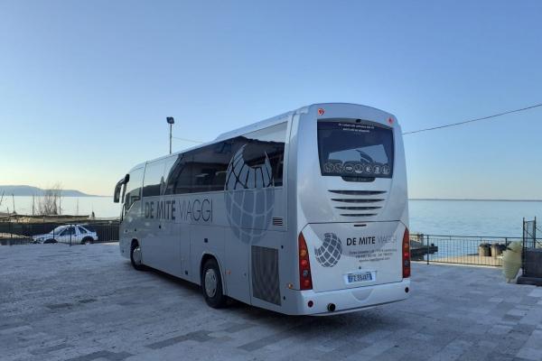 de-mite-autobus-new-3DF231278-6859-8D6F-A9E4-4586DB1EA62E.jpeg