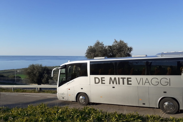 de-mite-autobus-new-41B9AC520-58C1-DD35-207E-D8358FAC7622.jpeg