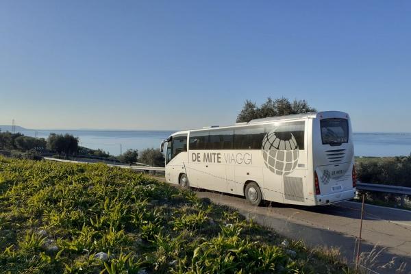 de-mite-autobus-new-50DB19E09-D0F0-2D53-8C78-688D83371775.jpeg
