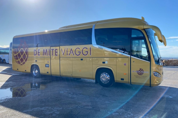 demite-noleggio-bus-2E1090AE4-6F12-9519-1B45-13CF95D2FFB0.jpeg