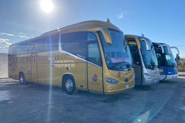 demite-noleggio-bus-3B064B59B-C267-6310-2437-941720F21AA5.jpeg