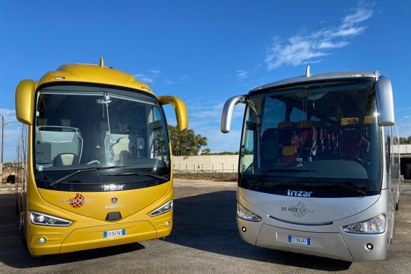 demite-noleggio-bus-6E370293E-9AC6-0A6A-23EE-55E73115B22C.jpeg