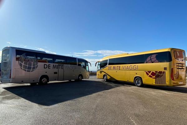 demite-noleggio-bus-77CF62981-5B61-A930-5FF1-EFB973DE3C7B.jpeg